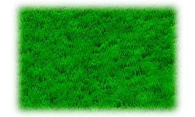 Трава в Photoshop